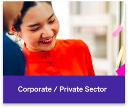 Corporate and Private Sector